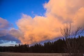 борода_мусульман