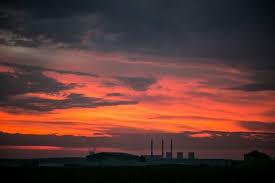 шахматы в Египте