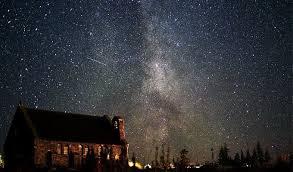 Ряд опытных растений