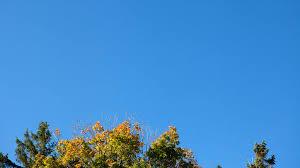 Фрейн дематериализует бронированное стекло