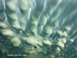 Иллюстрация генетической эволюции России сегодня