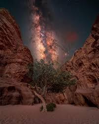 Многомерная Х-хромосома в портале животворящего огня